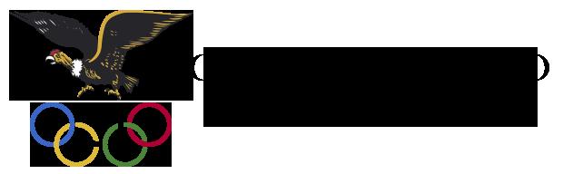 Comité Olímpico Boliviano Logo
